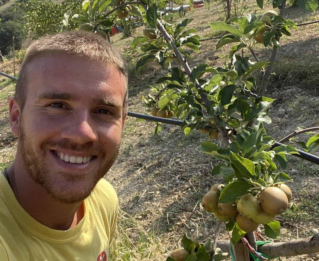 Macerato di Ortiche, un ottimo rimedio naturale per curare e far rivivere le tue piante